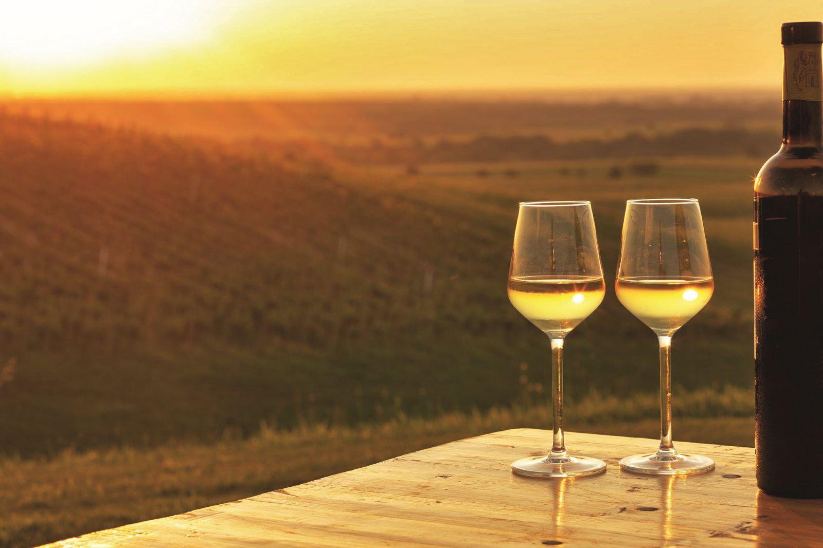 vino dunav